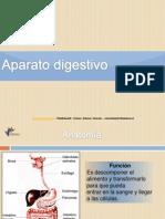 Pt Aparato Digestivo