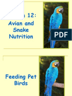 Avian and Snake Nutrition