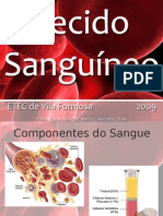 Biologia - Tecido Sanguíneo