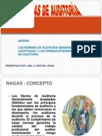 Normas Internacional de Auditoria