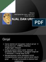 4 Biokimia Urinaria 2011