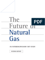 Natural Gas Study