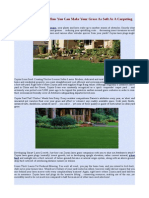 Zoysia Grass - Learn How You Can Make Your Grass as Soft as a Carpeting