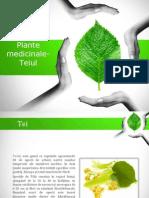 Plante Medicinale 2