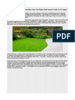 Zoysia Grass - Figure Out How You Can Make Your Yard as Soft as a Carpet