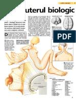 Computerul biologic.pdf