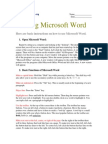 Using Microsoft Word
