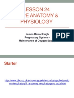 As PE Lesson 24 Resp Syst 2013-14