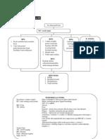 Patogenesis Dan Patofisiologis PPOK