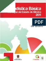 Valle de Bravo_estadistica Basica 2011
