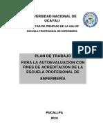 Plan de Autoevaluacion Escuela Enfermeria Universidad de Ucayali