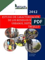 Informe Caracterización 2012