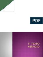 7 Tejido Nervioso