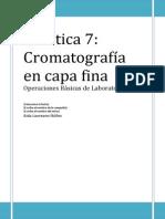 Práctica cromatografía