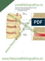 Www_resursebibliografice_ro__Kinetoterapia Dupa Hernia de Disc Lombara