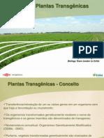 Aula de Transgenicos_Dow Agro