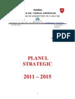 Plan Strategic Spital Oblu