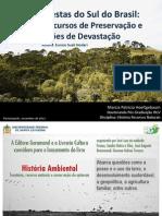 Historia Florestas Sul