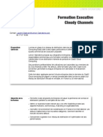 Formation Executive Cloudy Channels IBM
