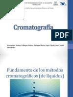 Fundamento de Los Métodos Cromatográficos