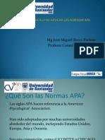 Normas APA Aplicacion Sencilla