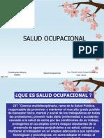 Salud Ocupacional 2013