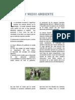 PERIODICO jk.pdf