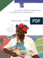 El Origen de La Cultura Africano Americana