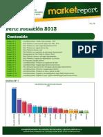 CPI – Market Report 2013