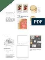 Leaflet Asuhan Keperawatan Sinusitis