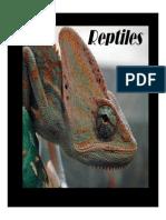 reptiles20pptsmallpdf com