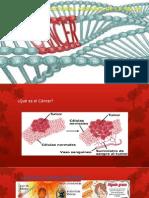 Diapositiva de Cancer Pa La Expo 2