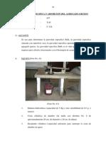 1.8. Gravedad Especifica y Absorcion Del Agregado Grueso