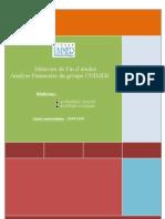 Analyse Financière Du Groupe UNIMER