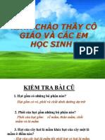 Tiet 42 Phat Tan Cua Qua Va Hat