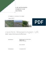 Biobouwers als optimalisatie van waterveiligheid in de Zuidwestelijke Delta