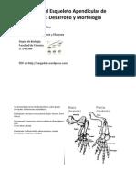 Modificasciones Apendiculares y
