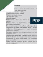 Frontline caseiro.docx