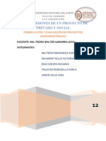 Las Inversiones de Un Proyecto Privado y Social