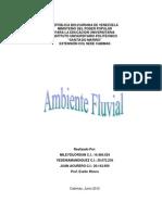 Ambiente Fluvial Trabajo Completo