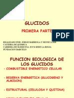 glucidos 1