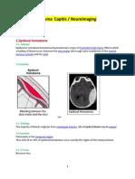 1.1.Epidural or Extradural Hematoma