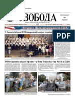 Svoboda-2010-27