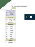Polar Bear.docx