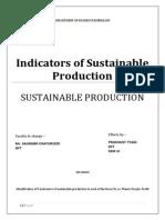 Indicators of Sustainable Production