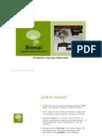 bonsaibasicoyolasergio-110901000803-phpapp01