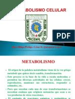 Metabolismo Celular- Clase 02 - 2014-I-fiai