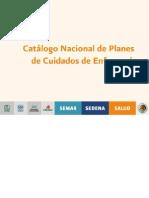 Catalogo Nacional de Planes de Cuidados