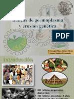 Bancos de Germoplasma y Erosion genetica.pptx