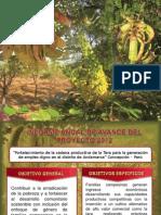 Diseño de Informe 2012